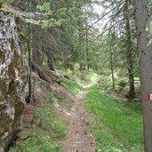 D-0933-badia-wanderweg-13A-von-oies-nach-castalta-wald.jpg