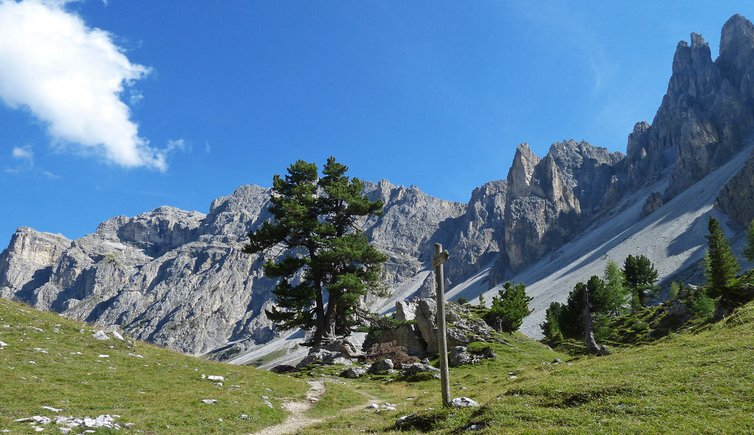 From Picedac to the Antersasc hut, Foto: AT, © Peer